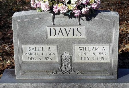 DAVIS, WILLIAM A. - Hanover County, Virginia | WILLIAM A. DAVIS - Virginia Gravestone Photos