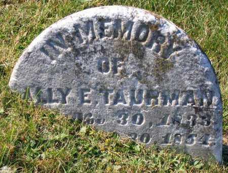 TAURMAN, SALLY E. - Hanover County, Virginia   SALLY E. TAURMAN - Virginia Gravestone Photos