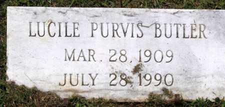 BUTLER, LUCILE PURVIS - Henrico County, Virginia | LUCILE PURVIS BUTLER - Virginia Gravestone Photos
