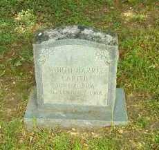 CARTER, WORTH HARRIS - Henrico County, Virginia   WORTH HARRIS CARTER - Virginia Gravestone Photos