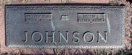 JOHNSON, HESTER B. - Henrico County, Virginia | HESTER B. JOHNSON - Virginia Gravestone Photos