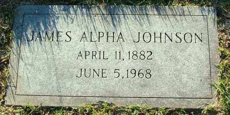 JOHNSON, JAMES ALPHA - Henrico County, Virginia | JAMES ALPHA JOHNSON - Virginia Gravestone Photos