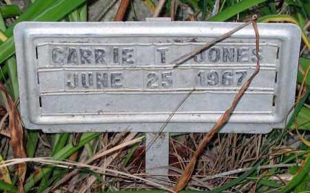 JONES, CARRIE T. - Henrico County, Virginia | CARRIE T. JONES - Virginia Gravestone Photos