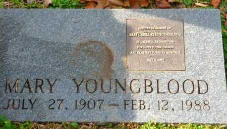 READ YOUNGBLOOD, MARY - Henry County, Virginia | MARY READ YOUNGBLOOD - Virginia Gravestone Photos