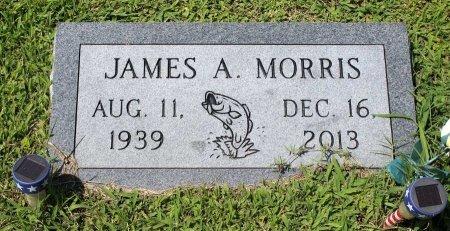MORRIS, JAMES A. - King William County, Virginia   JAMES A. MORRIS - Virginia Gravestone Photos