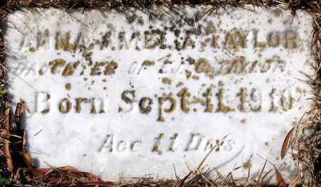 TAYLOR, ANNA AMELIA - King William County, Virginia   ANNA AMELIA TAYLOR - Virginia Gravestone Photos