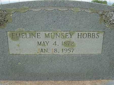 MUNSEY HOBBS, EMELINE - Lee County, Virginia | EMELINE MUNSEY HOBBS - Virginia Gravestone Photos