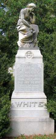 LEE WHITE, ROSA - Loudoun County, Virginia | ROSA LEE WHITE - Virginia Gravestone Photos