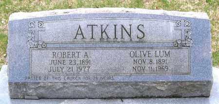 LUM ATKINS, OLIVE - Louisa County, Virginia | OLIVE LUM ATKINS - Virginia Gravestone Photos