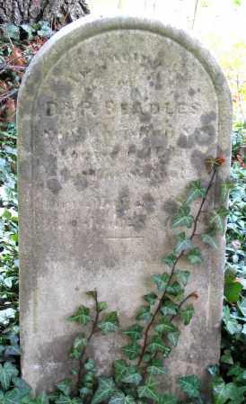 BEADLES, PERCIVAL, DR. - Louisa County, Virginia   PERCIVAL, DR. BEADLES - Virginia Gravestone Photos