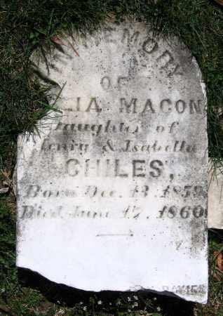 CHILES, JULIA MACON - Louisa County, Virginia   JULIA MACON CHILES - Virginia Gravestone Photos