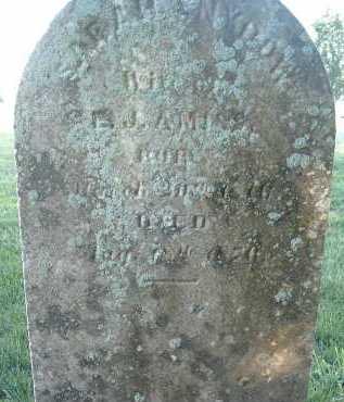 AMISS, SARAH - Montgomery County, Virginia   SARAH AMISS - Virginia Gravestone Photos
