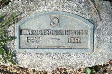 ARMSTRONG, INFANTS - Montgomery County, Virginia | INFANTS ARMSTRONG - Virginia Gravestone Photos