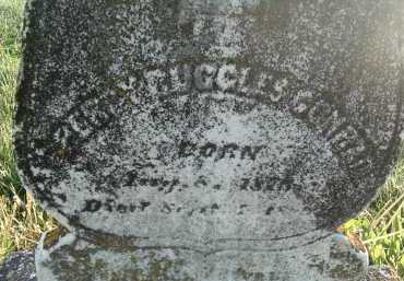 CONRAD, PERCY RUGGLES - Montgomery County, Virginia | PERCY RUGGLES CONRAD - Virginia Gravestone Photos