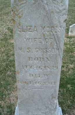 GRISSOM, ELIZA MOSES - Montgomery County, Virginia | ELIZA MOSES GRISSOM - Virginia Gravestone Photos