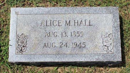 HALL, ALICE M. - Montgomery County, Virginia | ALICE M. HALL - Virginia Gravestone Photos