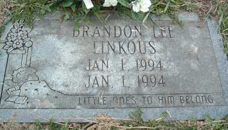 LINKOUS, BRANDON LEE - Montgomery County, Virginia   BRANDON LEE LINKOUS - Virginia Gravestone Photos