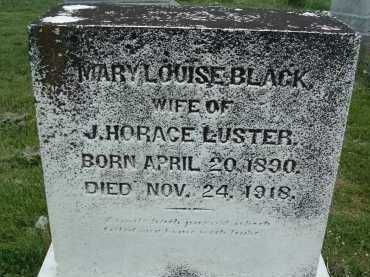 LUSTER, MARY LOUISE - Montgomery County, Virginia | MARY LOUISE LUSTER - Virginia Gravestone Photos