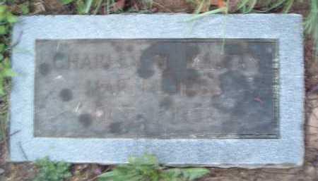 MARTIN, CHARLES W. - Montgomery County, Virginia | CHARLES W. MARTIN - Virginia Gravestone Photos