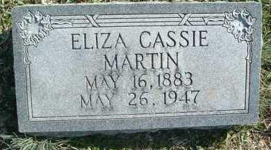 MARTIN, ELIZA CASSIE - Montgomery County, Virginia | ELIZA CASSIE MARTIN - Virginia Gravestone Photos