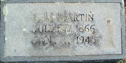 MARTIN, L. M. - Montgomery County, Virginia   L. M. MARTIN - Virginia Gravestone Photos