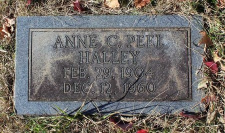 PEEL HALLEY, ANNE C. - Orange County, Virginia | ANNE C. PEEL HALLEY - Virginia Gravestone Photos