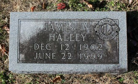 HALLEY, JAMES W. - Orange County, Virginia | JAMES W. HALLEY - Virginia Gravestone Photos