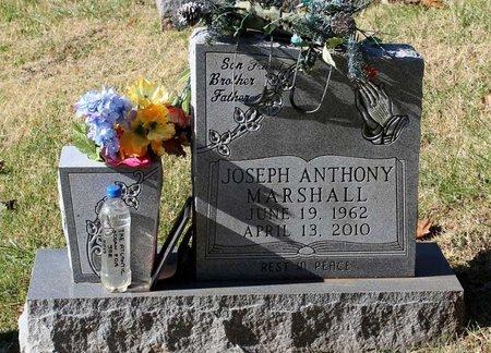 MARSHALL, JOSEPH ANTHONY - Orange County, Virginia | JOSEPH ANTHONY MARSHALL - Virginia Gravestone Photos