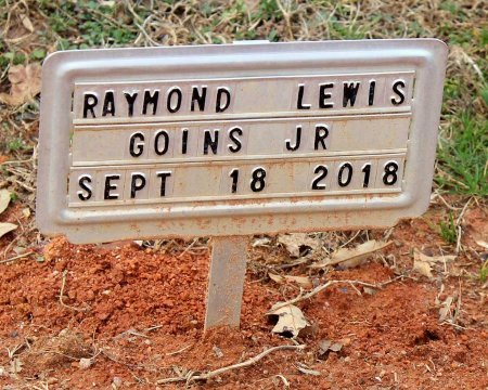 GOINS, RAYMOND LEWIS JR. - Powhatan County, Virginia | RAYMOND LEWIS JR. GOINS - Virginia Gravestone Photos