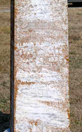 CARTER WILLIAMS, IRENE - Powhatan County, Virginia | IRENE CARTER WILLIAMS - Virginia Gravestone Photos