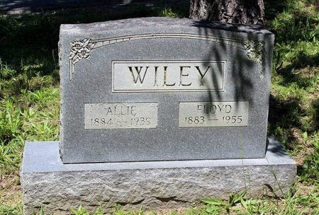 WILEY, ALLIE - Prince Edward County, Virginia | ALLIE WILEY - Virginia Gravestone Photos