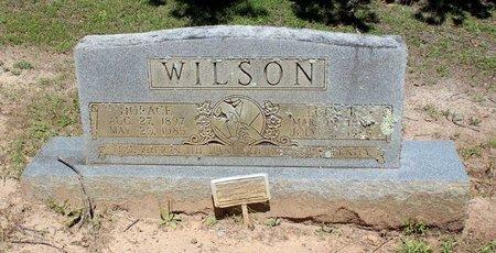 WILSON, LUCY R. - Prince Edward County, Virginia | LUCY R. WILSON - Virginia Gravestone Photos