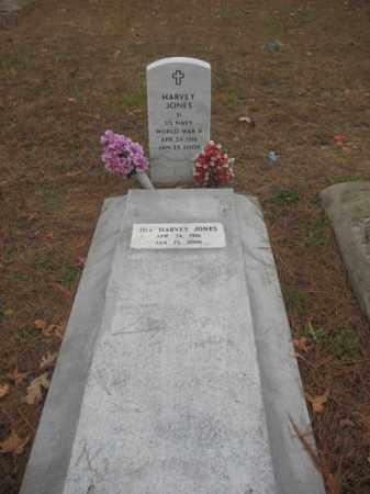 HARVEY, JONES - Prince George County, Virginia | JONES HARVEY - Virginia Gravestone Photos