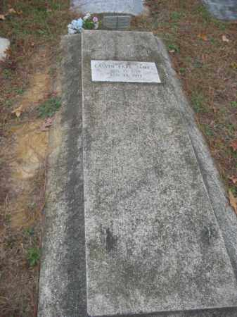 JAMES, CALVIN EARL - Prince George County, Virginia   CALVIN EARL JAMES - Virginia Gravestone Photos