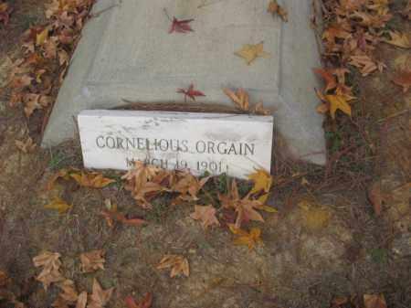 ORGAIN, CORNELIOUS - Prince George County, Virginia   CORNELIOUS ORGAIN - Virginia Gravestone Photos
