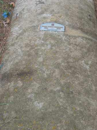 POWELL, LAURA - Prince George County, Virginia   LAURA POWELL - Virginia Gravestone Photos