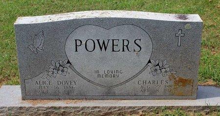 POWERS, CHARLES E. - Pulaski County, Virginia | CHARLES E. POWERS - Virginia Gravestone Photos