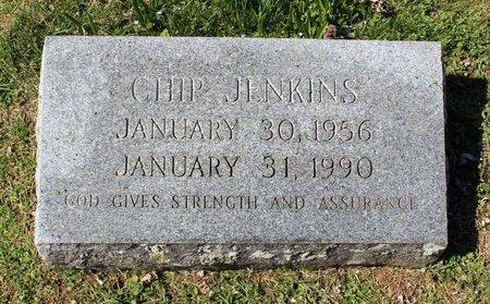 JENKINS, CHIP - Rappahannock County, Virginia | CHIP JENKINS - Virginia Gravestone Photos
