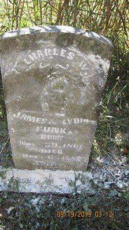 FUNK, CHARLES W. - Rockingham County, Virginia | CHARLES W. FUNK - Virginia Gravestone Photos