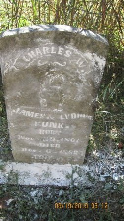 FUNK, CHARLES W. - Rockingham County, Virginia   CHARLES W. FUNK - Virginia Gravestone Photos