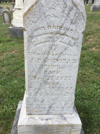 FUNK, DAISY PEARL - Rockingham County, Virginia | DAISY PEARL FUNK - Virginia Gravestone Photos