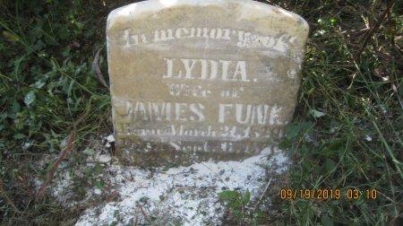 FUNK, LYDIA MARGARET - Rockingham County, Virginia | LYDIA MARGARET FUNK - Virginia Gravestone Photos