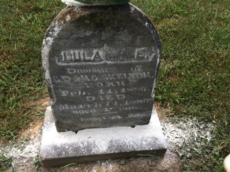 SKELTON, LULA E. - Rockingham County, Virginia | LULA E. SKELTON - Virginia Gravestone Photos