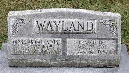 WAYLAND, OLENA ABIGAIL - Rockingham County, Virginia | OLENA ABIGAIL WAYLAND - Virginia Gravestone Photos