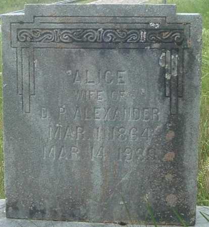 ALEXANDER, ALICE - Russell County, Virginia | ALICE ALEXANDER - Virginia Gravestone Photos