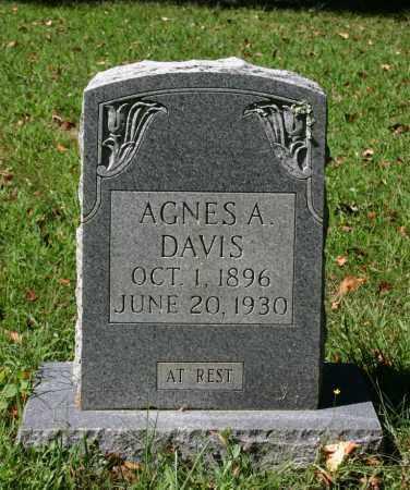 JOHNSON DAVIS, AGNES A. - Russell County, Virginia | AGNES A. JOHNSON DAVIS - Virginia Gravestone Photos