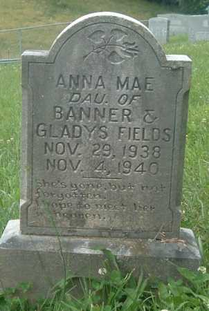 FIELDS, ANNA MAE - Russell County, Virginia | ANNA MAE FIELDS - Virginia Gravestone Photos