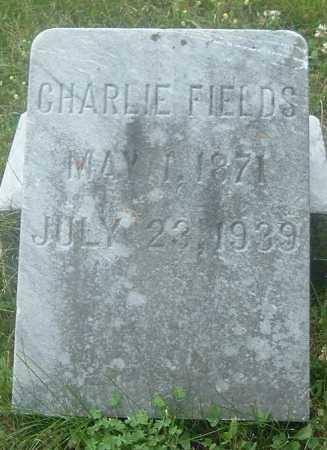 FIELDS, CHARLIE - Russell County, Virginia | CHARLIE FIELDS - Virginia Gravestone Photos