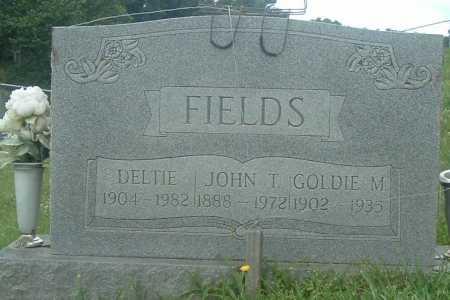 FIELDS, JOHN T - Russell County, Virginia | JOHN T FIELDS - Virginia Gravestone Photos