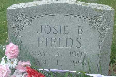FIELDS, JOSIE B - Russell County, Virginia | JOSIE B FIELDS - Virginia Gravestone Photos